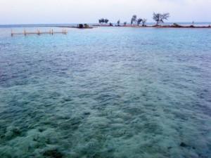 keindahan bawah laut pulau tidung